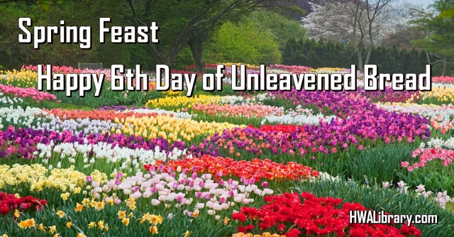 SpringFeast_ULB_Day6